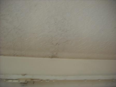 A ceiling leak can indicate time to replace your roof.